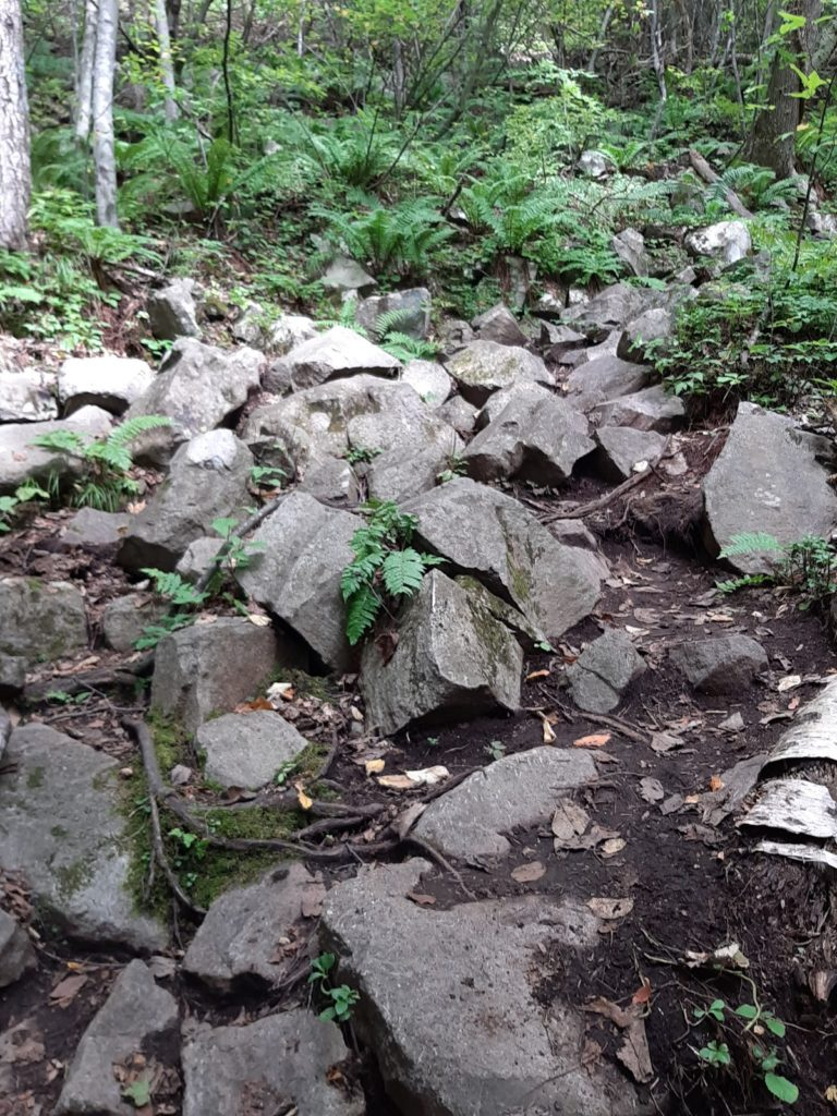 八剣山登山道