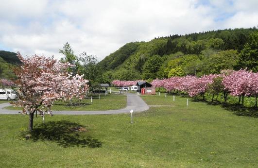 湯の沢水辺公園